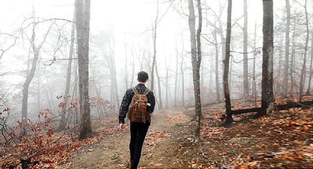 guy in woods